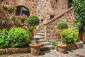 Stone Entrance To The Ancient House Full Of Plants Royalty Free Stock Image - 41492826