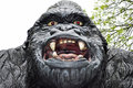 Gorilla Scary Model Of  Stock Image - 41505391