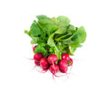 Bunch Of Radishes Stock Photos - 41506273