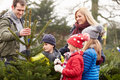 Outdoor Family Choosing Christmas Tree Together Royalty Free Stock Photos - 41519868