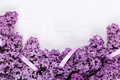 Lilac Frame Royalty Free Stock Image - 41527976