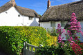 Thatched Roof Cottage. Cornwall, England, UK Stock Photos - 41528343