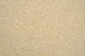 Sandy Beach Texture. Royalty Free Stock Image - 41623936