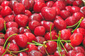 Cherries Royalty Free Stock Image - 41628156