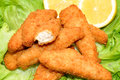 Breaded Chicken Goujons Royalty Free Stock Photos - 41638258