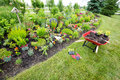 Garden Tools Laying On The Ground Stock Photo - 41656820