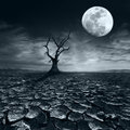 Lonely Dead Tree At Full Moon Night Under Dramatic Cloudy Sky Royalty Free Stock Photo - 41695355
