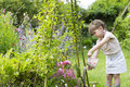 Cute Little Girl Watering Flowers In Garden Royalty Free Stock Images - 41732499