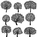 Vector Collection Of Tree Silhouettes Royalty Free Stock Images - 41743489