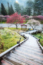 Beautiful Sakura Garden In Wuling F Royalty Free Stock Photography - 41762157