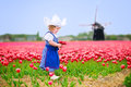 Cute Girl In Dutch Costume In Tulips Field With Windmill Stock Images - 41768534