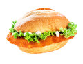 Schnitzel Or Escalope Bun With Clipping Path Stock Photo - 41787530