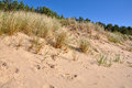 Sand Dune. Jurmala, Baltic Sea, Latvia. Royalty Free Stock Photo - 41788325
