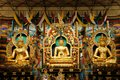 Buddha Statues In A Tibetan Monastery Royalty Free Stock Photo - 41798085