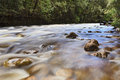Tas Franklin River Royalty Free Stock Photography - 41802777