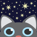 Grey Cat Looking Up In Night Star Sky. Vector Illustration Royalty Free Stock Photo - 41823015