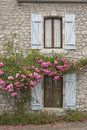 Windows And Roses Stock Photos - 41830643