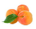 Apricots With Leaf Royalty Free Stock Photo - 41846175