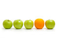 Comparing Apples To Oranges Royalty Free Stock Photos - 41876988