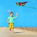 Happy Boy Playing With Kite On Summer Field Royalty Free Stock Photos - 41882138