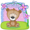 Bear With Flowers Stock Image - 41893661