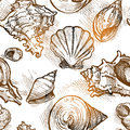 Seamless Pattern From Of Different Shapes Shell  Sketches Stock Photos - 41910193
