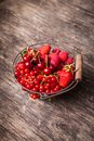 Red Summer Fruits Stock Photography - 41921382