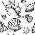 Seamless Pattern From Sketches Of Different Shapes Shell 1 Royalty Free Stock Image - 41925606