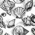 Seamless Pattern From Sketches Of Different Shapes Shell Stock Photo - 41925610