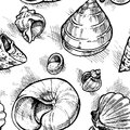 Seamless Pattern From Sketches Of Different Shapes Shell 2 Royalty Free Stock Image - 41925716