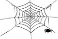 Hand Draw Sketch, Spider And Web Stock Photography - 41956412