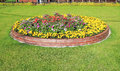 Duplex Flowerbed On A Lawn Royalty Free Stock Photography - 41974317
