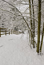 Snow Corral And Trees Royalty Free Stock Image - 4201226