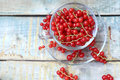 Red Currant Royalty Free Stock Image - 42034166