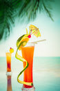 Tequila Sunrise Cocktail With Fruits And Umbrella Decoration Royalty Free Stock Image - 42129156