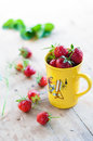 Strawberries Royalty Free Stock Images - 42132139