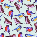 Seamless Pattern With Cute Little Birds Stock Images - 42142714
