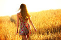 Young Woman Walking In Wheat Field Stock Photo - 42148530