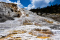 Mammoth Terraces, Yellowstone National Park, Wyoming, USA Stock Photo - 42153090