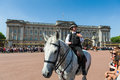 Police Woman On A Horse Stock Photography - 42175202