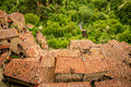 View Of A Green Valley In Sorano Over Red Roofs Stock Image - 42252541