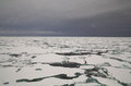 Packed Ice In Arctic Sea Royalty Free Stock Photography - 42256157