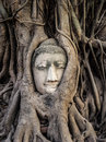Head Of Buddha Statue In The Tree Roots, Ayutthaya, Thailand Royalty Free Stock Photos - 42285058