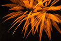 Abstract Background: Blurred Orange Fireworks  Stock Images - 42345494