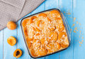 Apricot Clafoutis Stock Images - 42359644