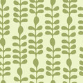 Acacia Leaves Seamless Pattern Royalty Free Stock Images - 42399799