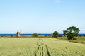 Rural Landscape With Windmill And Corn Field Royalty Free Stock Photo - 42426805