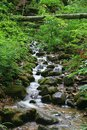 Deep Forest Waterfall Stock Image - 42483361