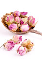 Dried Rose Buds Stock Photo - 42521970