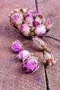 Dried Rose Buds Stock Image - 42522241